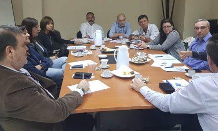 Reunión de asesores médicos para la creación de un modelo de Planes Parciales